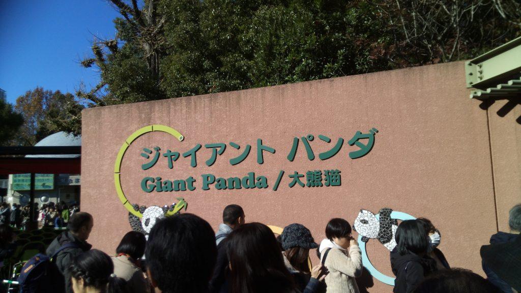 上野動物園に待たずに入る究極の方法(入場券は先に買っておく他)